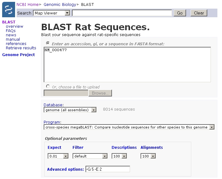 BLAST RAT Sequences page